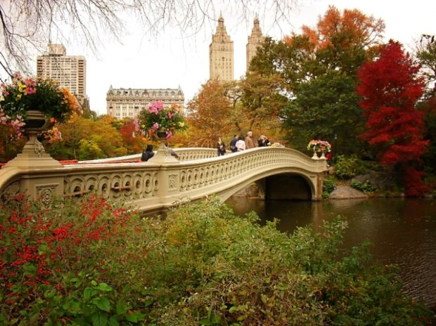 Bow Bridge, Central Park in NewYork City