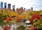 10 Best Places to Walk in Central Park for a Fall